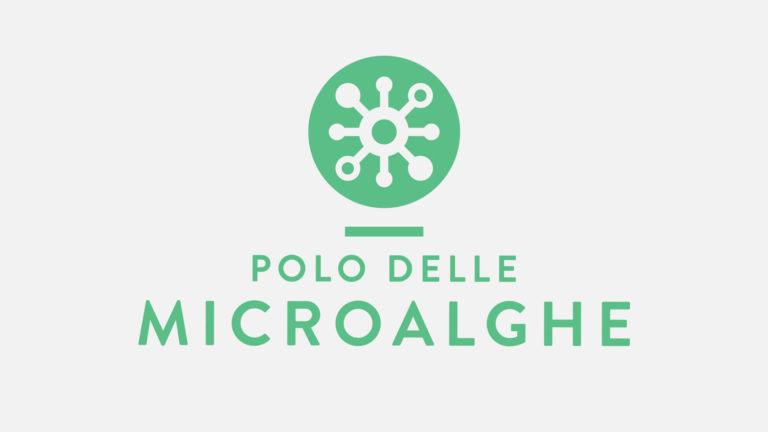 brand-image-agenzia-grafica-logo